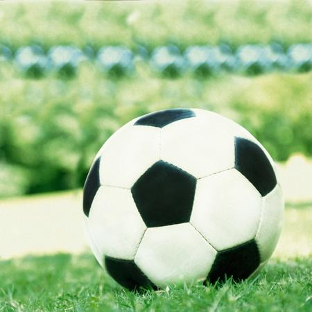 grass close up: Football ball on the grass close up