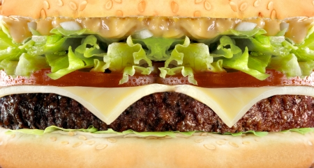 Cheeseburger hamburger macro close-up Stock Photo - 14093401