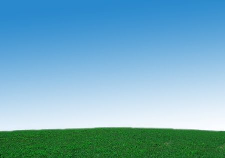 fresh green grass with bright blue sky photo