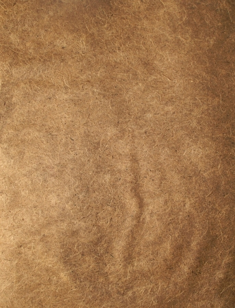 Brown Paper Texture and can be background photo