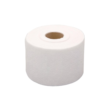 Toilet paper isolated on white Stock Photo - 15293382