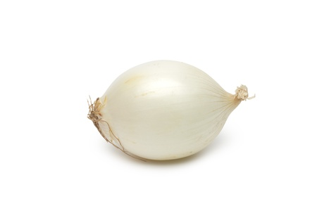 Onion on white background photo