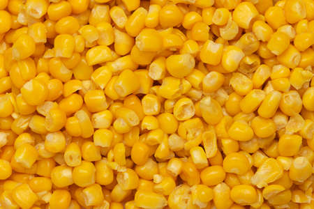 Canned corn background photo