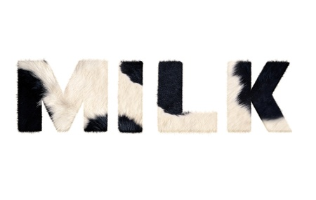 Milk word from cow fur   Isolated on white background  With clipping path  photo