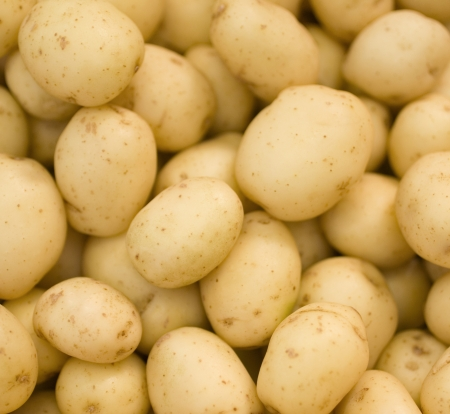 potatoes raw vegetables food pattern in market photo