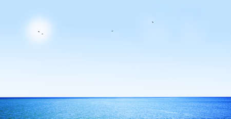Blue sky, ocean and flaying birds photo