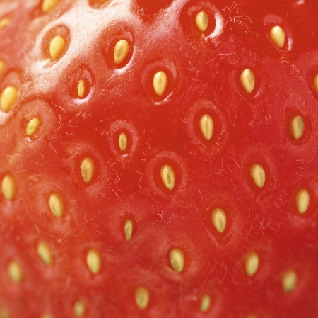 extreme macro red strawberry or texture photo