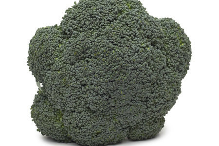 Broccoli isolated on white background photo