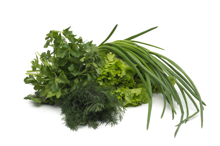 fresh green grass parsley dill onion herbs mix photo