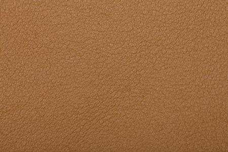 Skin texture background Stock Photo - 22183281