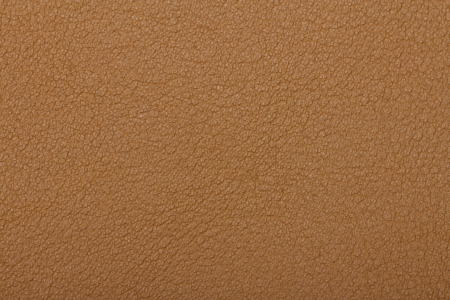 Skin texture background Stock Photo - 22183281