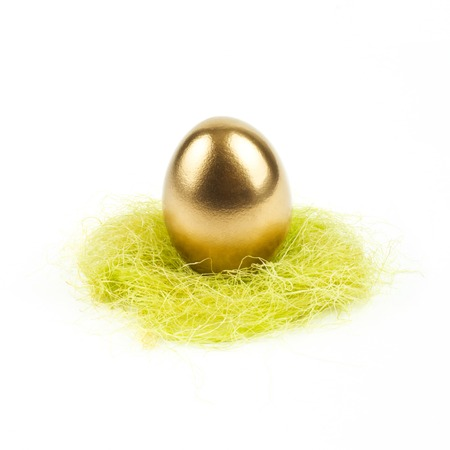golden egg in nest isolated on white photo