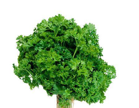 vibrat color: Lettuce close up