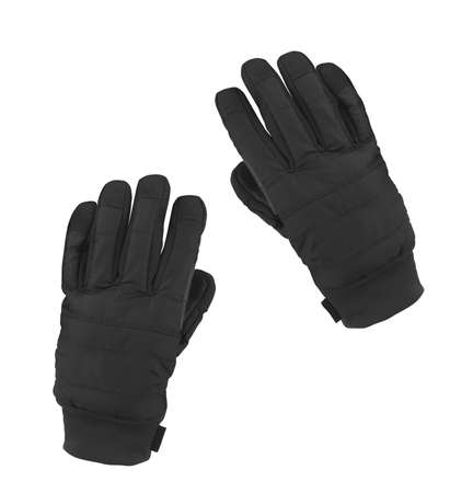 winter gloves: studio photo of black winter gloves