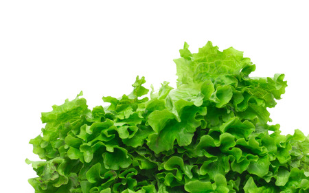 nonfat: Selection of fresh mixed green salad leaves Stock Photo