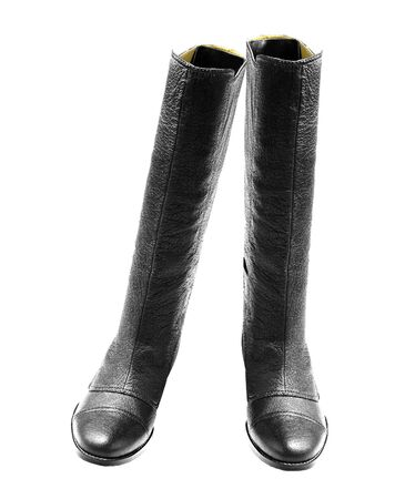 wellies: leather rubber boots isolated on white background