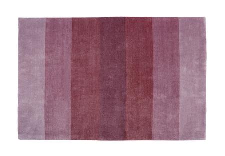 Photo of Carpet Guide Strips Фото со стока