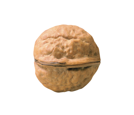 Single walnut on white background