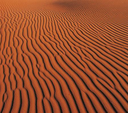 Sands of desert Banque d'images - 105649460