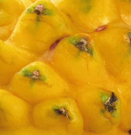 dragonfruit background