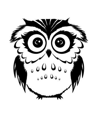 Barn Owl Side View