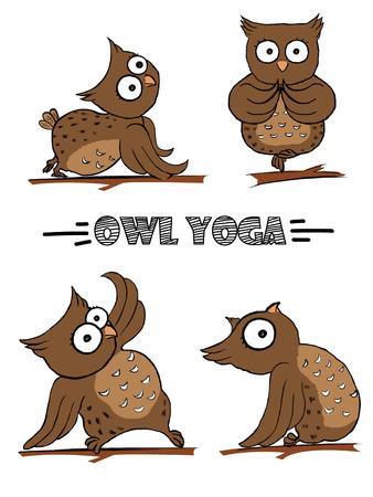 Owl in yoga pose
