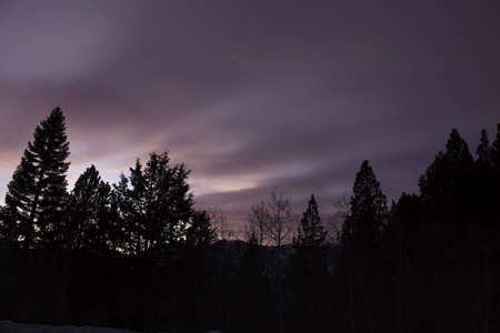 A purple sunset in the mountains with a silhouetted forest