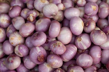 Onion spread out in a market Banco de Imagens - 9304312