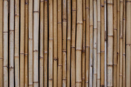 Afence made out of dry bamboo