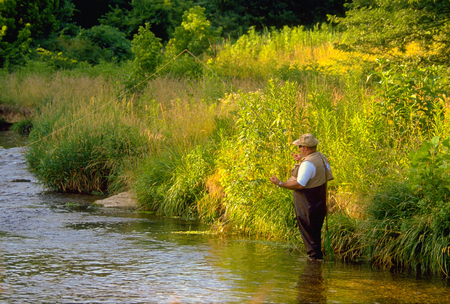 A fly fisherman casts for elusive Brown Trout in the cold waters of Crane Creek near the town of Crane, Missouri on JUNE 26, 2015.