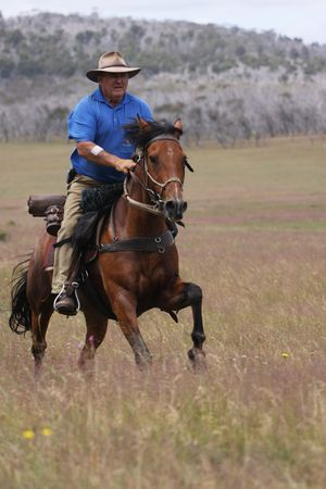stockman: The man from Snowy Mountains riding a horse at full gallop Stock Photo