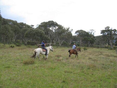 horsing around: Riders horsing around Stock Photo