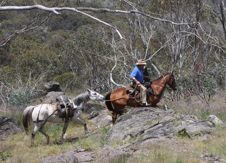 stockman: Riders going up a mountain