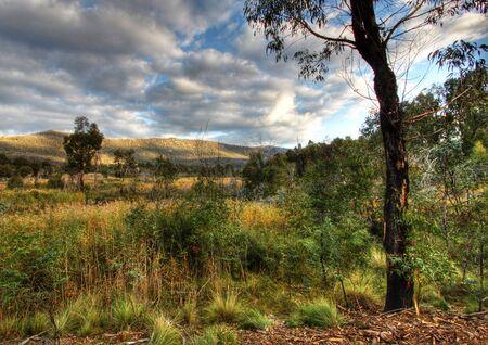 tidbinbilla: Wetlands at Tidbinbilla Nature Reserve