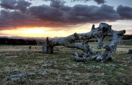 tidbinbilla: Sunset landscape in Canberra, the capital of Australia