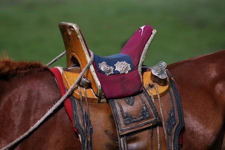 mongolia horse: Nomad horse saddle in the Yol Valley, Gobi Desert steppes, Mongolia