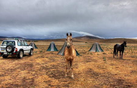 Snowy Mountains Horse Trekking Adventure in the Australian Outback Stock Photo - 4245421