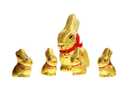 golden chocolate Easter bunnies isolated with area for text photo
