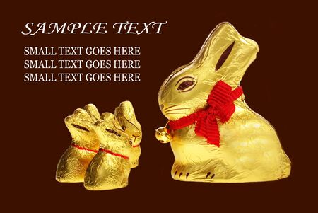 eastertime: Family of golden chocolate Easter bunnies isolated with area for text Stock Photo