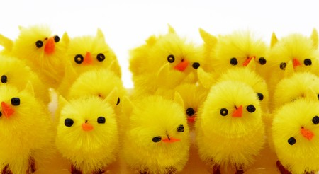 Easter background with decorative chickens in a nest Stock Photo - 4570677