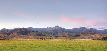 Sheep Grazing at Sunrise in New Zealand Stock Photo - 4845667