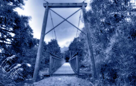 Bridge in a New Zealand rainforest around an old glacial lake Stock Photo - 4845697