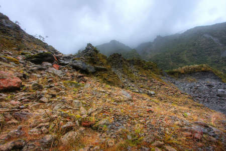 Fox glacier landscape in New Zealand Stock Photo - 4845608