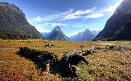New Zealand Fiordland at the Milford Sound  photo