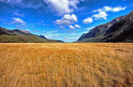 New Zealand wild mountain and water landscape