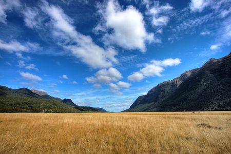 amazing stunning: New Zealand wild mountain and water landscape