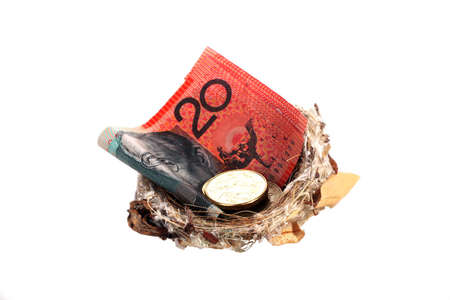 Money in nest, notes and coins photo