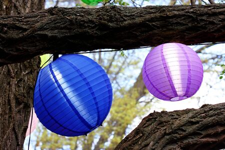 set of colorful light shades, hanging from trees photo