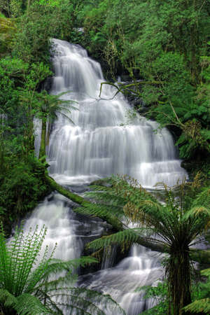 Triplet Falls in Otway National Park photo