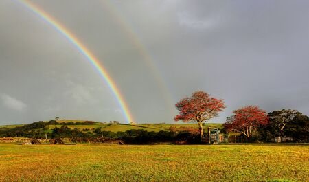 rainbow over a farm field photo